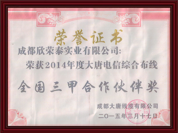 2014年度大唐电信综合布线全国三甲合作伙伴奖