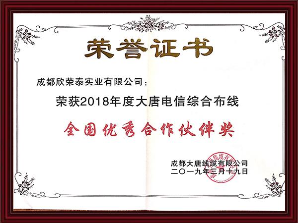 2018年度大唐电信综合布线全国优秀合作伙伴奖